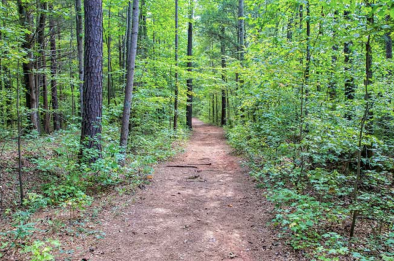 Anne Springs Close Greenway - Fort Mill, SC